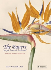 The Bauers: Joseph, Franz & Ferdinand. Masters of Botanical Illustration